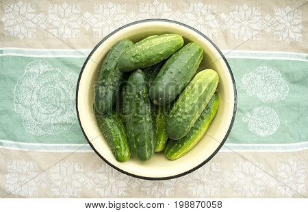 Green cucumbers in a plate on a thematic background