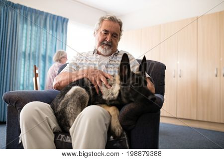 Low angle view of senior man stroking puppy while sitting on armchair at retirement home