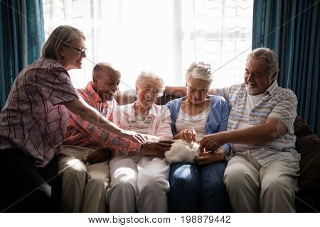 Multi-ethnic senior friends playing with rabbit while sitting on sofa in nursing home