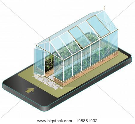 Vector isometric greenhouse with glass walls in mobile phone, isometric. Horticultural conservatory and growing vegetables, flowers in communication technology, paraphrase. Isolated, white background.