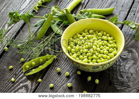 Branch of fresh green peas with pods and leaves near bowl with peas on dark wooden background. New harvest of organic green peas on rustic wooden table. Vegetarian and healthy food