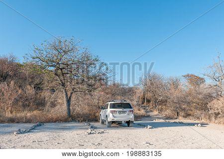 ETOSHA NATIONAL PARK NAMIBIA - JUNE 22 2017: The parking area and footpath leading to the Moringa Waterhole at the Halali Rest Camp in the Etosha National Park Namibia