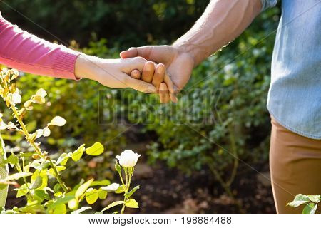 Mid-section of couple holding hands in garden