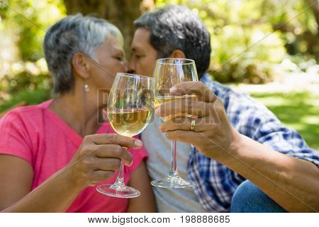 Senior couple kissing while drinking wine at the park