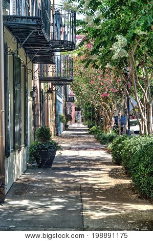 Charleston Street and sidewalk with balconies in summer time