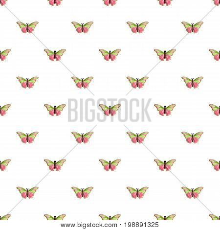 Esmeralda butterfly pattern in cartoon style. Seamless pattern vector illustration