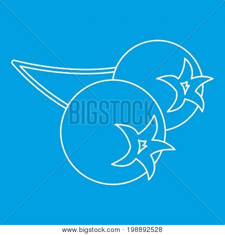 Chokeberry icon blue outline style isolated vector illustration. Thin line sign