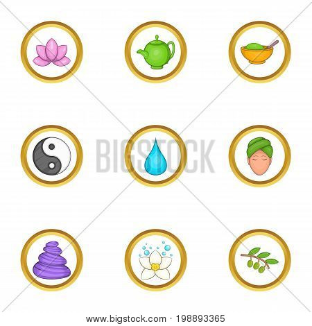 Chinese medicine icons set. Cartoon set of 9 chinese medicine vector icons for web isolated on white background