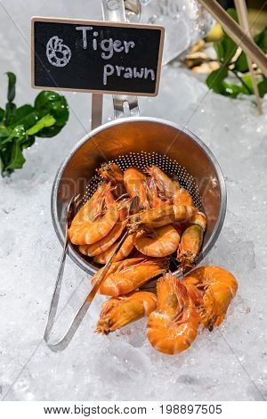 Tiger Prawn seafood on ice