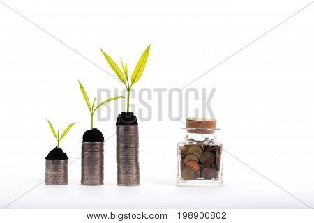 Financial growth concept Coins and seed over white background Saving money concept Money jar
