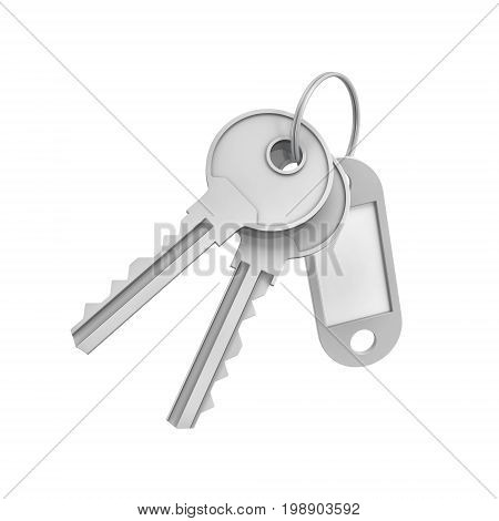 3d rendering of two isolated silver keys on a key ring with a blank label behind. Safety and protection. Keep information locked. Password protected entry.