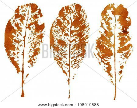 Dry autumn leaves silhouettes, ink trace stamp isolated on white background.