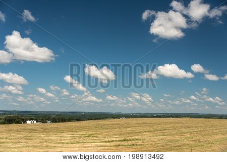 View Of A Field In Illinois Country Side