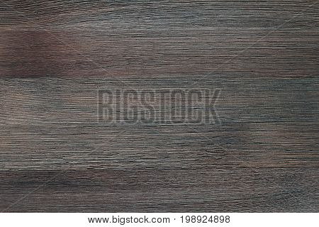Natural color wooden floor surface. Textured background from mocha wood planks. Horizontal grain.