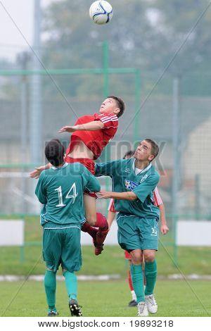 KAPOSVAR, HUNGARY - OCTOBER 16: Daniel Pager (14) in action at the Hungarian National Championship under 19 game between Kaposvar and Debrecen October 16, 2010 in Kaposvar, Hungary.