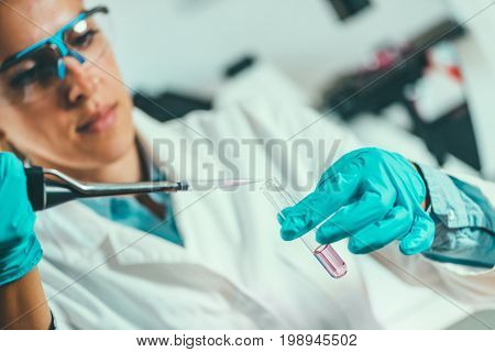 Scientist Researching In Laboratory, Color Image, Toned Image, Selective Focus