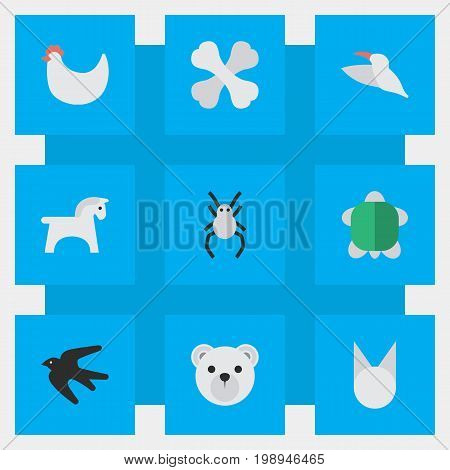 Elements Steed, Crane, Cat And Other Synonyms Bones, Horse And Stork.  Vector Illustration Set Of Simple Zoo Icons.