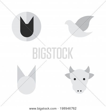 Elements Cat, Tomcat, Kine And Other Synonyms Cat, Kine And Cow.  Vector Illustration Set Of Simple Wild Icons.