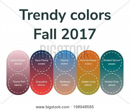 vector illustration infographics trendy colors of the 2017 fall grenadine tawny port ballet slipper butterum navy peony neutral gray shaded spruce golden lime marina autumn maple gradient