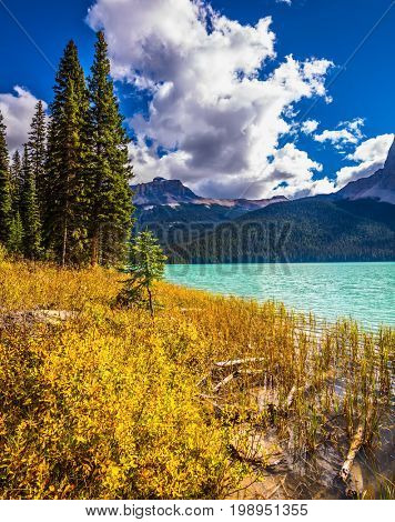 Lake in the Rocky Mountains. The smooth water among the yellowed autumn forest. The concept of eco-tourism and active recreation