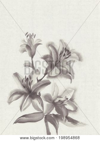 Lily flowers hand drawn with ink on vintage rice paper background. Traditional oriental ink painting sumi-e, u-sin, go-hua.