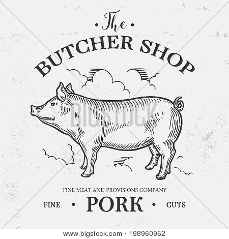 Pig Farm Animal Livestock. Pig Hand Drawn Sketch Logo In A Graphic Style. Vintage Vector Engraving I
