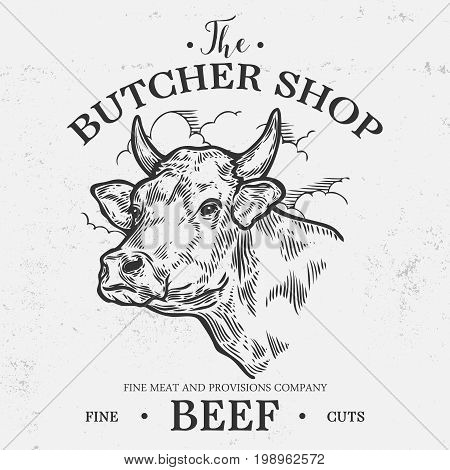 Cow Head, Fresh Beef Organic Meat. Hand Drawn Sketch In A Graphic Style. Vintage Vector Engraving Il