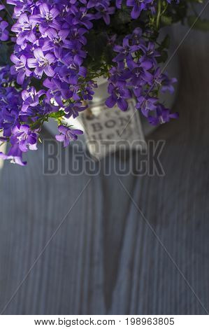 Violet bellflowers is in the grey pot on the wooden background