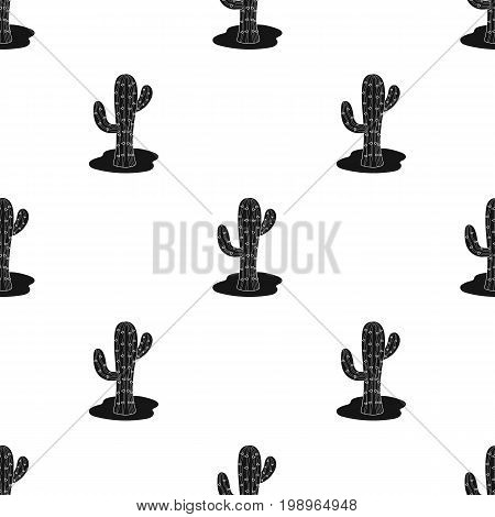 Cactus icon in black design isolated on white background. Rodeo symbol stock vector illustration.
