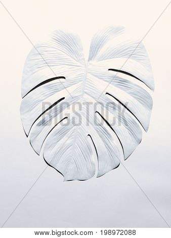 Painted tropical monstera leaf with hard shadow on a white background