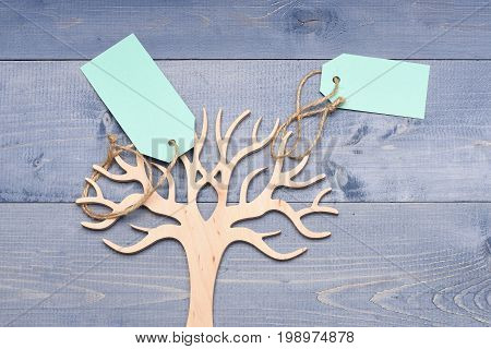 Beauty And Shopping Concept: Decorative Tree To Store Jewellery