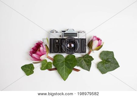 Vintage Retro Photo Camera, Dogwood Green Leaves (cornus Alba) And Nymphaea Waterlily Purple Flowers