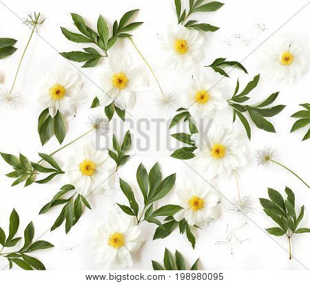 Empty Paper In The Middle Of Creative Arrangement Made Of White Peony Flowers, Green Leaves And Pasq