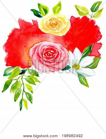Greetings card, pink and tea roses, white kosmeja with leaves against a red abstract spot, isolated on white background, hand-painted watercolor illustration and paper texture
