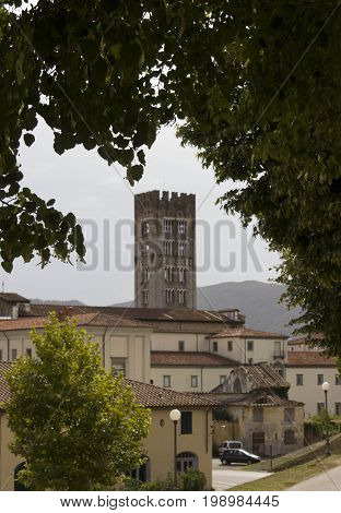 LUCCA, ITALY - AUGUST 15 2015: Detail of Lucca tower and buildings from it cyclist path