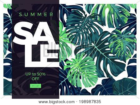 Summer tropical sale banner design with green monstera palm leaves. Vector illustration.