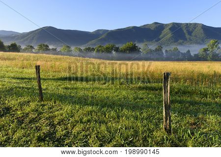 Foggy Field and Mountains at Sunrise - Great Smoky Mountains National Park
