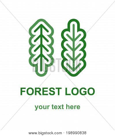 Fir and pine tree minimalist logo concept. Linear logotype template with two coniferous forest trees. Suitable as a forestry, ecological or environmental emblem. Vector design element isolated on white background.