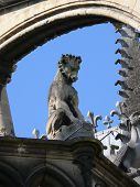 Dragon on Reims cathedral overlooking the square. poster