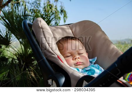 Cute Six Months Old Baby Boy Sleeping In The Pushchair In The Shadow Of The Palm Tree.
