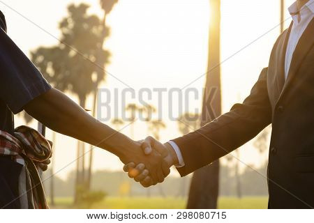 Joint Venture In Agricultural Trade, Handshake To Be A Contract In Agreement. Between Businessmen An