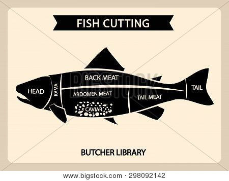 Fish Meat Cutting Vector Vintage Chart, Cuts Guide Diagram. Illustration Of Chart Cut Fish, Tail And
