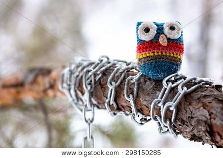 Close-up Of A Knitted Owl Made Of Wool On A Pine Branch Which Is Wrapped In A Chain, A Trunk And A T