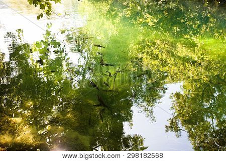 Krka, Sibenik, Croatia, Europe - Light Reflection Upon The River Surface Of Krka National Park