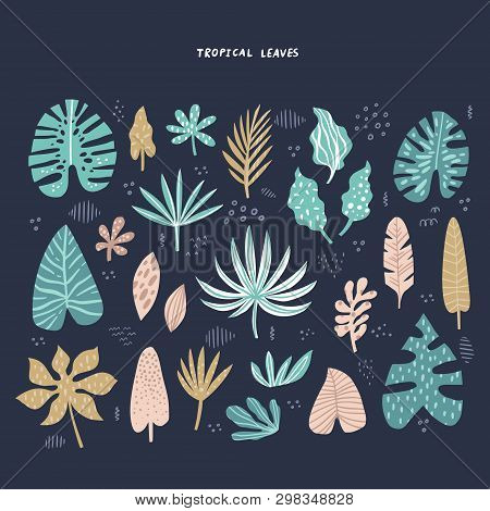 Exotic, Tropical Leaves Hand Drawn Flat Illustrations Set. Jungle, Rainforest Foliage Sketch Clipart