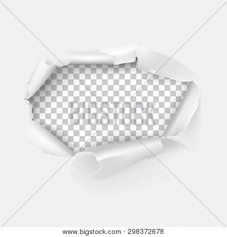 Vector Realistic Torn Hole In Paper On Transparent Background. Design Template. Torn Paper Edge.