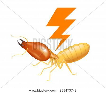 Termite With Thunder Symbol Orange Isolated On White Background, Logo Insects Termite And Thunder Fl