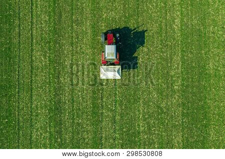 Agricultural Tractor Is Fertilizing Wheat Crop Field With Npk Fertilizers, Aerial View From Drone Po