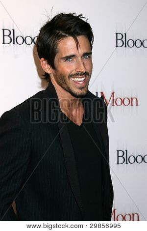 LOS ANGELES - FEB 9:  Brandon Beemer arrives at the