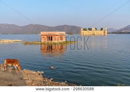 Jal Mahal Is Water Palace In Man Sagar Lake In Jaipur. Rajasthan. India